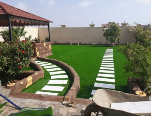 شركة تنسيق حدائق فى عجمان |0521106029| تنفيذ وتنسيق