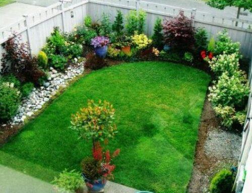 شركة تنسيق حدائق فى دبى |0553689103| تجميل وتنظيم